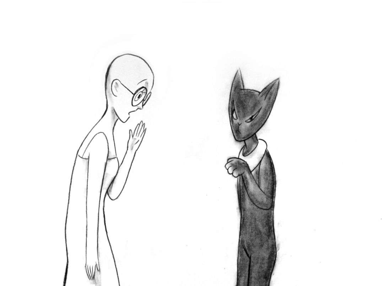 Das Katzenjammertal (2013)